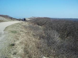 wandelen over de duinen van domburg:foto van www.infodomburg.nl