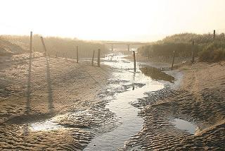 sluftergebied-zwarte-polder