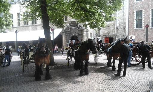ringrijden op het plein van de abdij