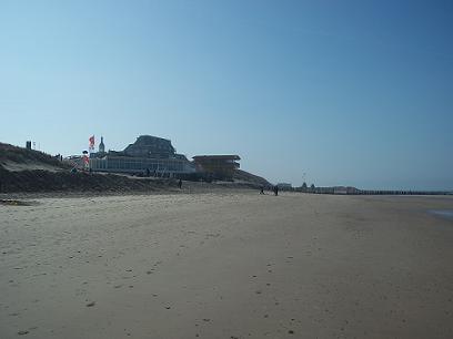 de stenen toko die op het strand ligt