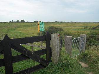 verdronken zwarte polder wandelen
