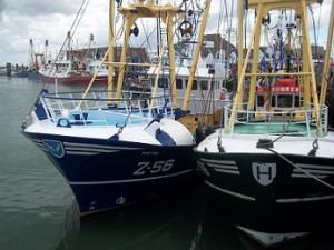 haven met vissersboten in Breskens Zeeland
