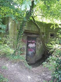 bunker tussen bomen