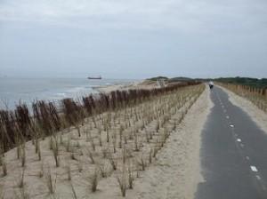 fietsen langs het strand en de zee