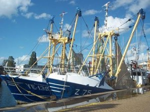 ye139 z75 vissersboot