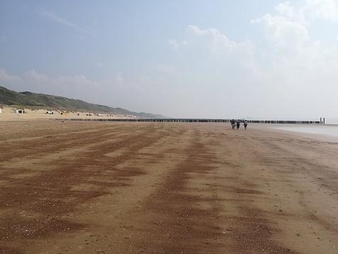 strand Herwegh Dishoek