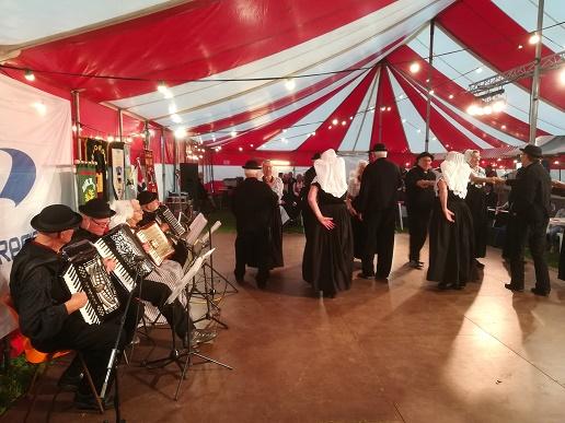 dansgroep folklore