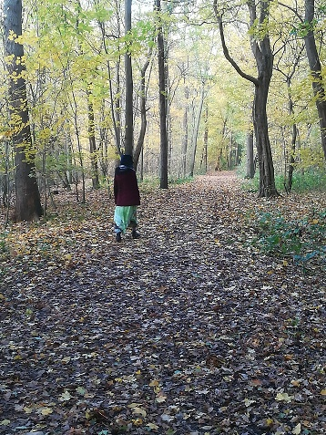 wandelen in ritthemse bos vlissingen