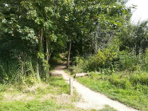 MTB trail Nollebos Vlissingen