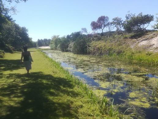 wandelen in Oranjezon Vrouwenpolder