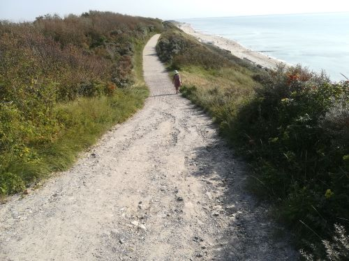 zoutelande duinen wandelen